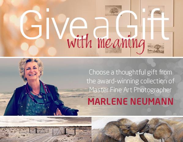 marlene-neumann-gifts-decor1